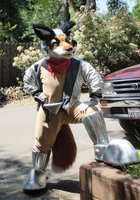 Highlight for album: Star Fox in Sonora 2008